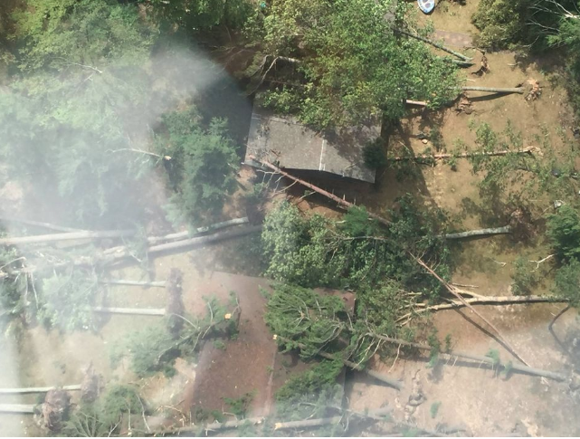 An aerial view of the Glen Arbor-area storm damage. Photo courtesy Grand Traverse County Emergency Management, U.S. Coast Guard Air Station Traverse City